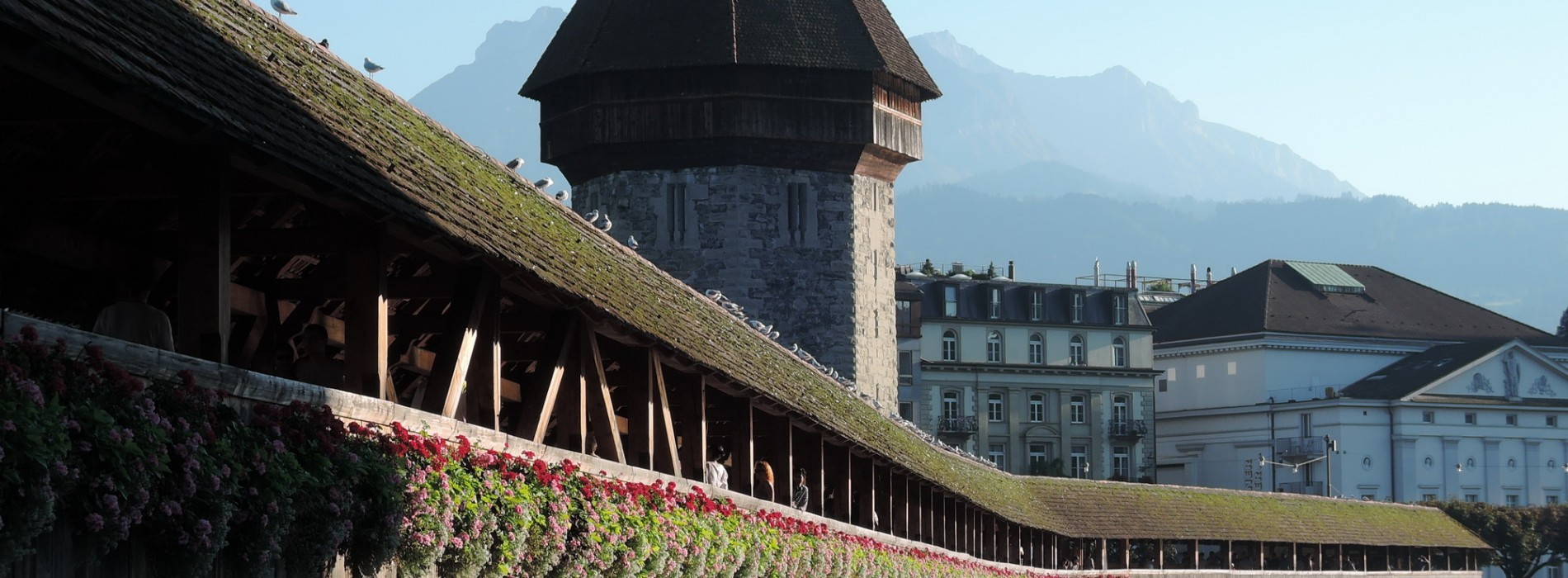Chiều bên hồ Lucerne