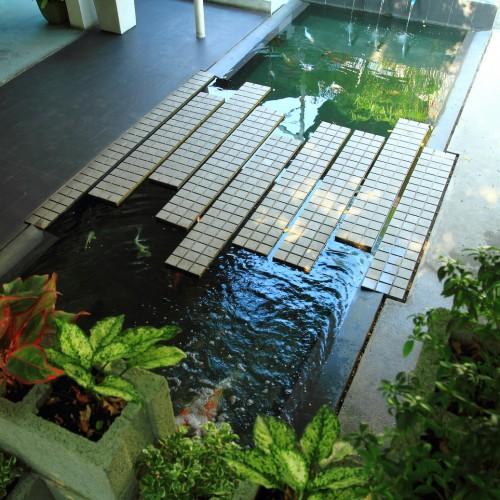 Thiết kế vườn và hồ cho nhà ở