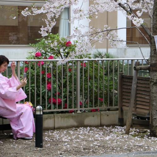 Một thoáng Nhật Bản từ Điện Biên Phủ Q.3 đến Tokyo